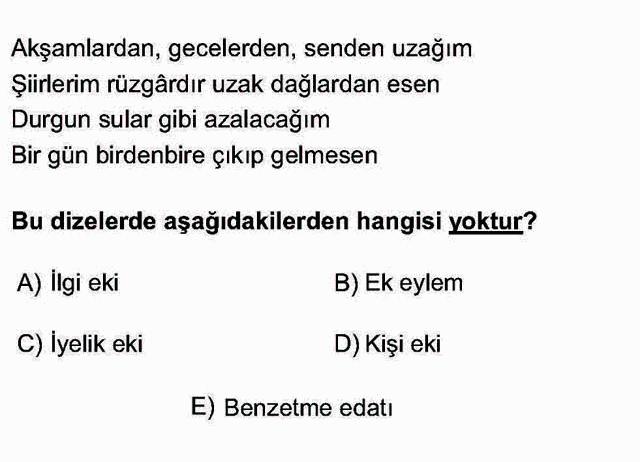 LYS Türk Dili ve Edebiyatı Soruları 8. Soru