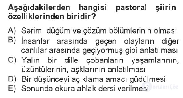 Türk Dili II Bahar Dönemi Final 10. Soru