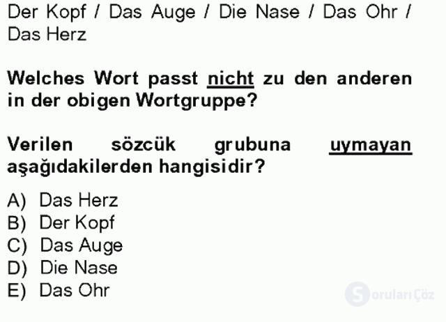 Almanca I Tek Ders Sınavı 10. Soru