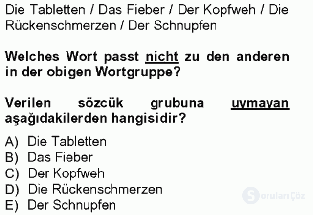 Turizm İçin Almanca I Tek Ders Sınavı 17. Soru