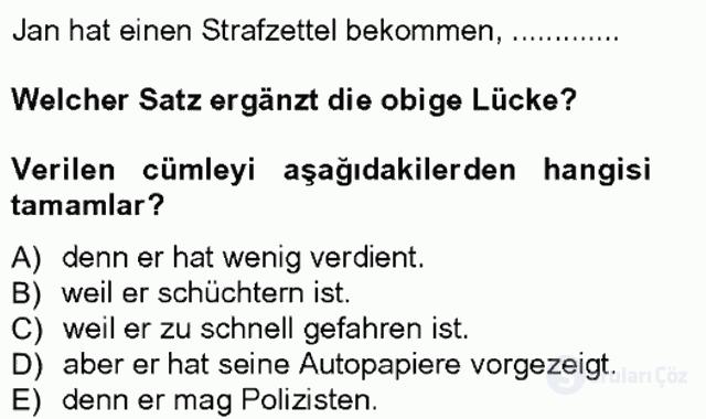 Almanca III Tek Ders Sınavı 13. Soru