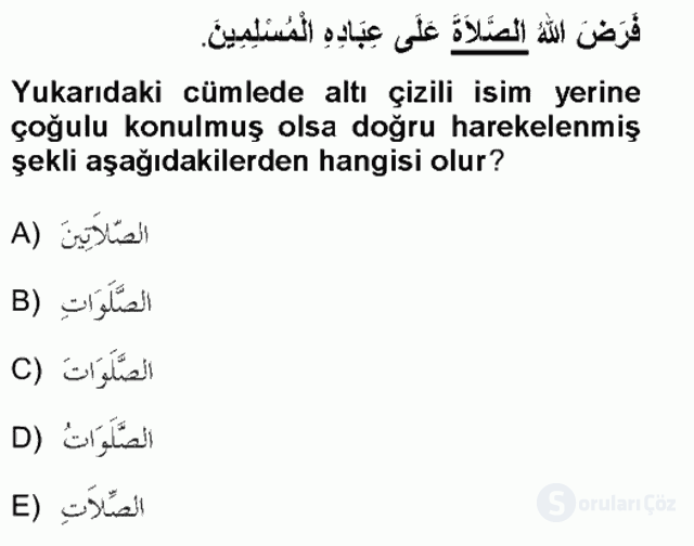 Arapça I Tek Ders Sınavı 10. Soru