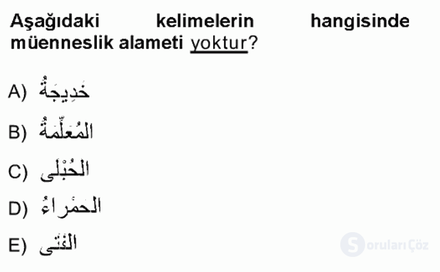 Arapça I Tek Ders Sınavı 4. Soru