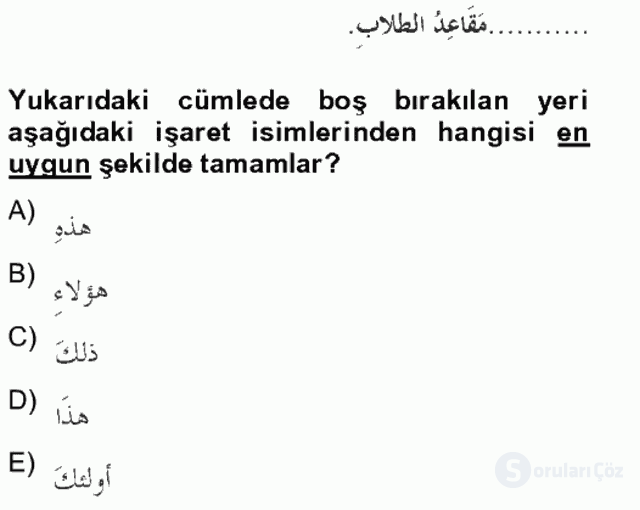 Arapça II Tek Ders Sınavı 12. Soru