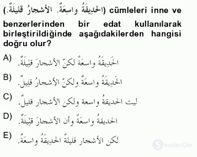 Arapça II Tek Ders Sınavı 15. Soru