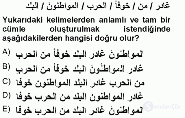 Arapça III Tek Ders Sınavı 13. Soru