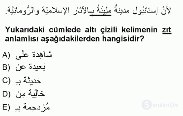 Arapça III Tek Ders Sınavı 15. Soru