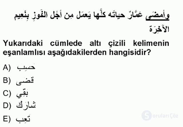 Arapça III Tek Ders Sınavı 17. Soru
