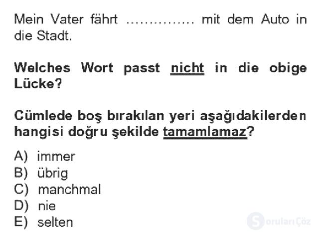 Almanca IV Bahar Dönemi Final 19. Soru