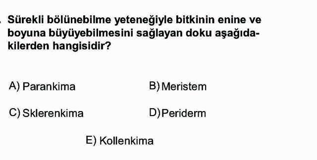 LYS Biyoloji Soruları 23. Soru