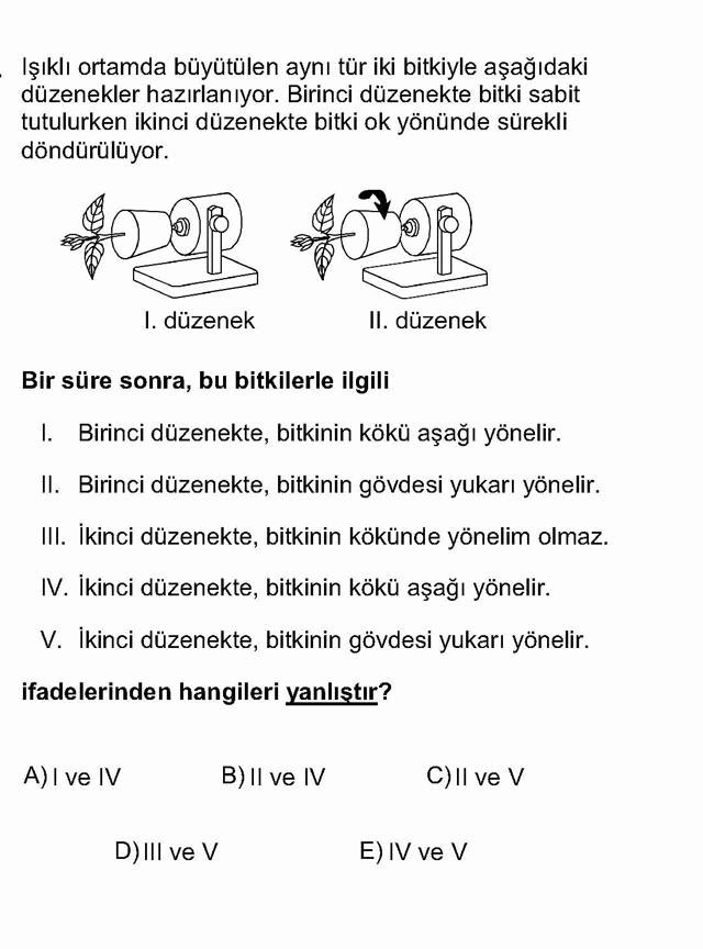 LYS Biyoloji Soruları 26. Soru