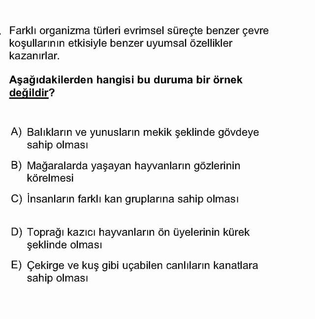 LYS Biyoloji Soruları 29. Soru