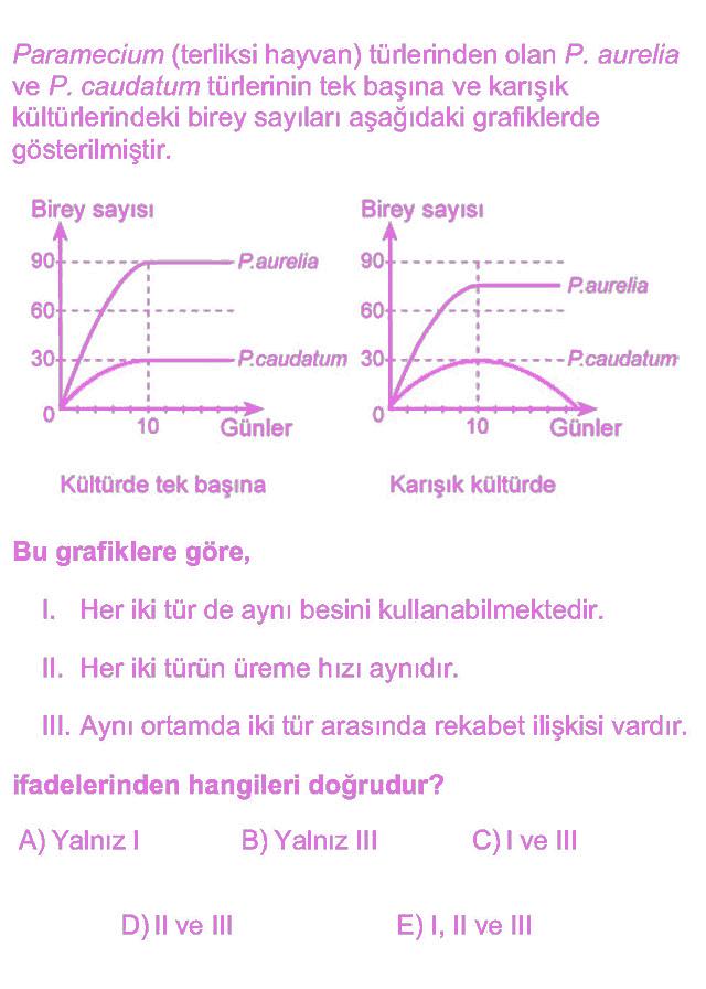 LYS Biyoloji Soruları 21. Soru