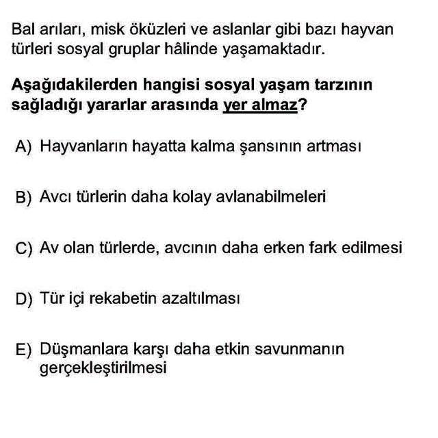 LYS Biyoloji Soruları 22. Soru