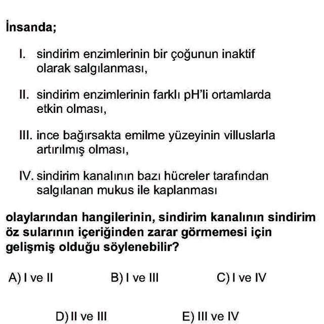 LYS Biyoloji Soruları 25. Soru