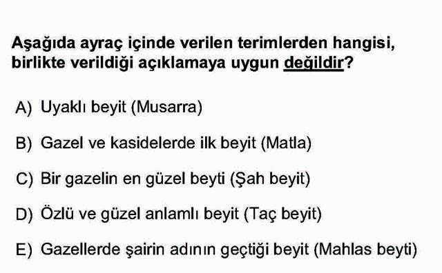 LYS Türk Dili ve Edebiyatı Soruları 28. Soru