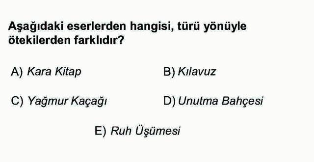 LYS Türk Dili ve Edebiyatı Soruları 53. Soru
