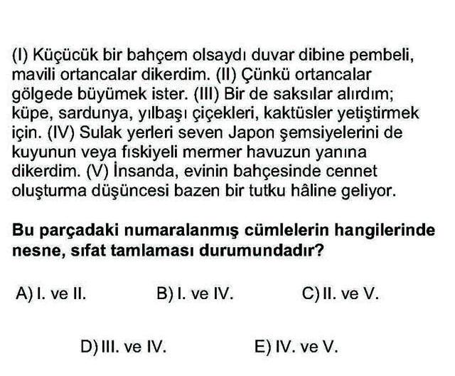 LYS Türk Dili ve Edebiyatı Soruları 6. Soru