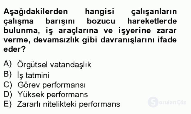 Performans Yönetimi Tek Ders Sınavı 2. Soru