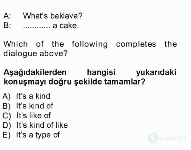 İngilizce I Tek Ders Sınavı 13. Soru
