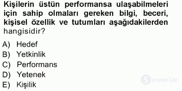 Performans ve Kariyer Yönetimi Tek Ders Sınavı 5. Soru