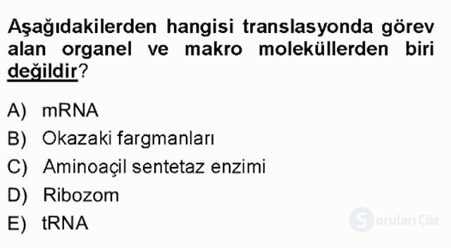 Temel Veteriner Genetik Tek Ders Sınavı 15. Soru