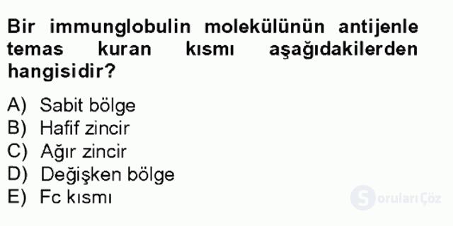 Temel Veteriner Mikrobiyoloji ve İmmünoloji Tek Ders Sınavı 13. Soru