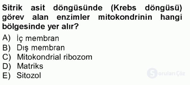 Hücre Kimyası Tek Ders Sınavı 20. Soru