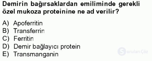 Temel Veteriner Biyokimya Tek Ders Sınavı 14. Soru
