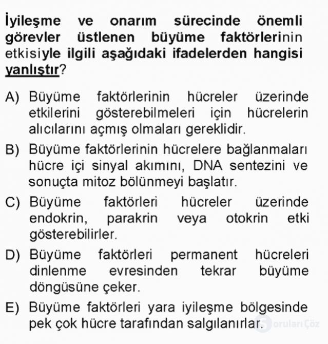 Temel Veteriner Patoloji Tek Ders Sınavı 16. Soru