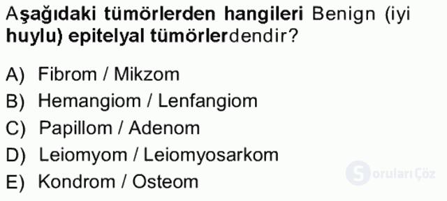 Temel Veteriner Patoloji Tek Ders Sınavı 19. Soru