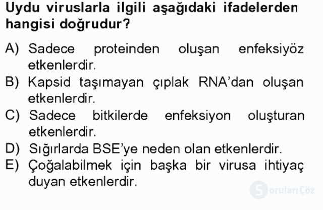 Viroloji Tek Ders Sınavı 11. Soru
