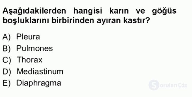 Tıbbi Terminoloji Tek Ders Sınavı 6. Soru