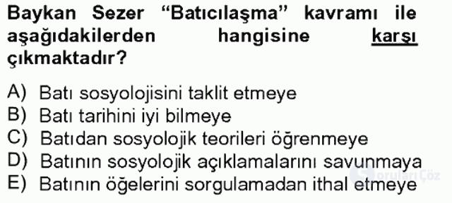 Türk Sosyologları Tek Ders Sınavı 19. Soru