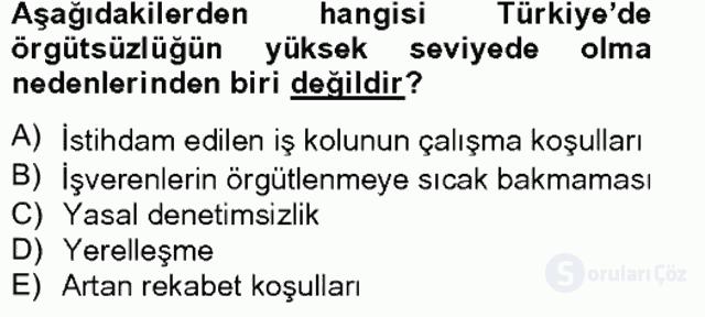 Türkiye'nin Toplumsal Yapısı Tek Ders Sınavı 19. Soru