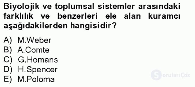 Türkiye'nin Toplumsal Yapısı Tek Ders Sınavı 2. Soru