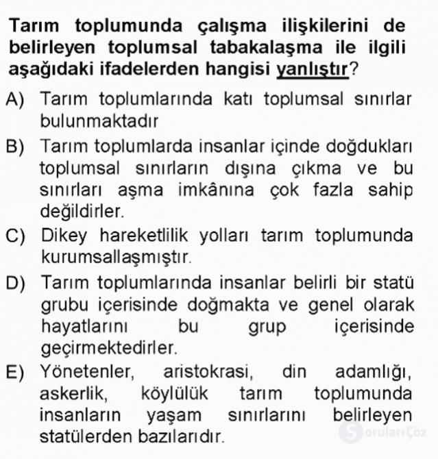 Çalışma Sosyolojisi Tek Ders Sınavı 13. Soru