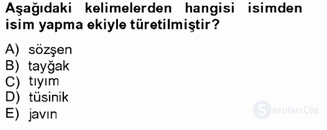 Çağdaş Türk Yazı Dilleri II Tek Ders Sınavı 14. Soru