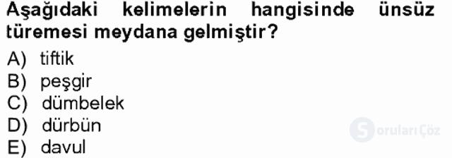 XVI-XIX. Yüzyıllar Türk Dili Tek Ders Sınavı 10. Soru