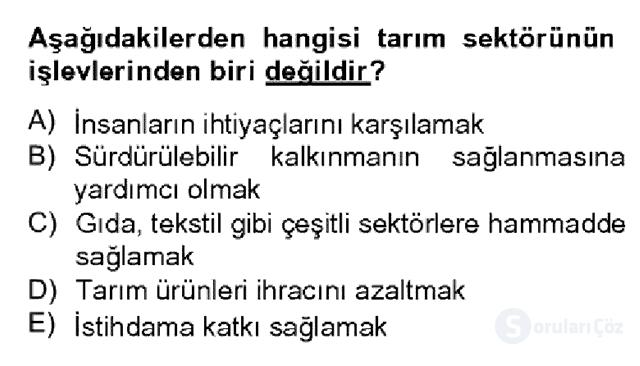 Türkiye Ekonomisi Bahar Dönemi Final 8. Soru