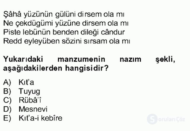 XIV-XV. Yüzyıllar Türk Edebiyatı Bahar Dönemi Final 17. Soru
