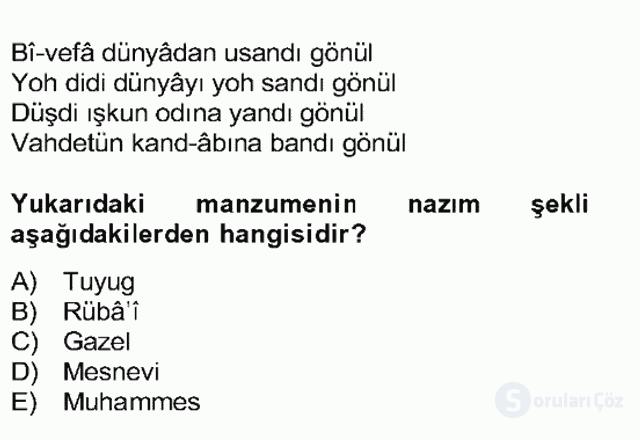 XIV-XV. Yüzyıllar Türk Edebiyatı Bahar Dönemi Final 18. Soru