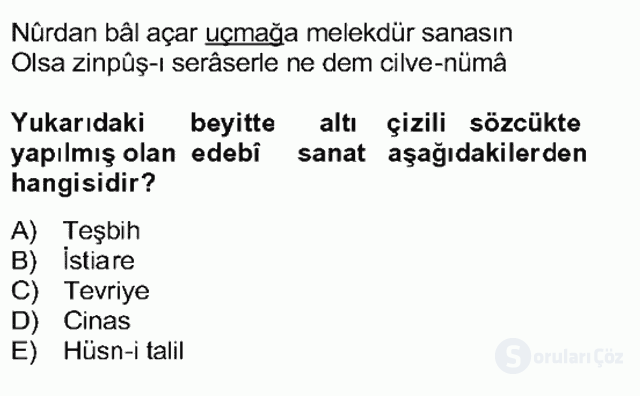 XVII. Yüzyıl Türk Edebiyatı Bahar Dönemi Final 4. Soru