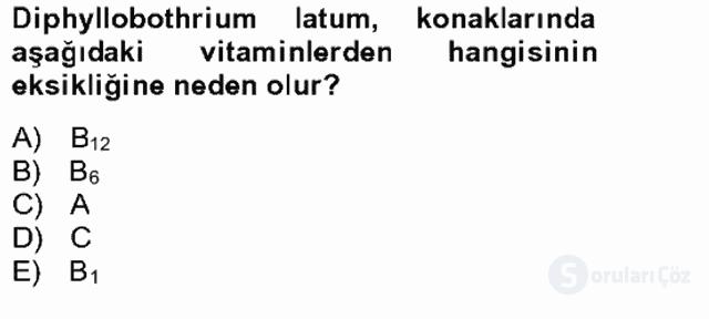Temel Veteriner Parazitoloji Bahar Final 21. Soru