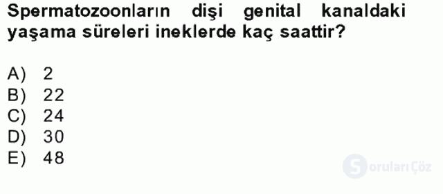 Doğum Bilgisi ve Sun'i Tohumlama Bahar Final 11. Soru