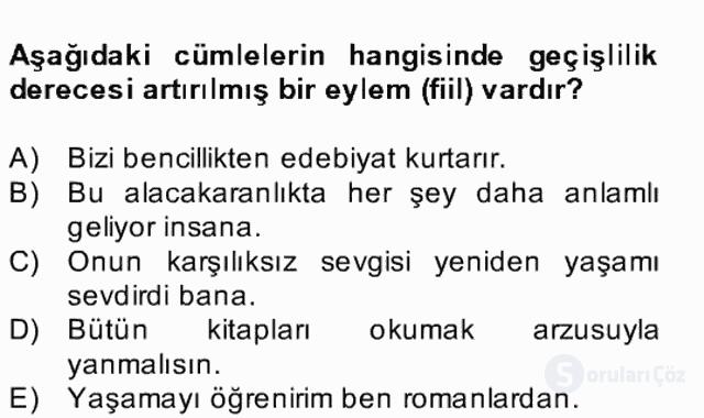 Türkçe Biçim Bilgisi Bahar Final 21. Soru