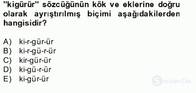 Uygur Türkçesi Bahar Final 15. Soru