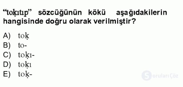 Uygur Türkçesi Bahar Final 16. Soru