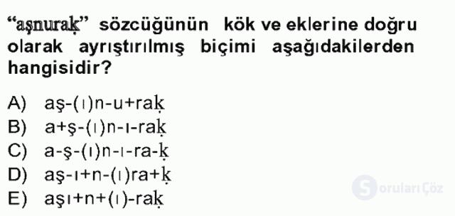 Uygur Türkçesi Bahar Final 19. Soru