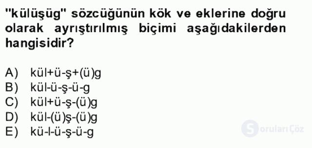 Uygur Türkçesi Bahar Final 20. Soru